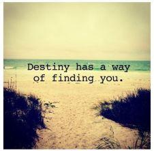 destinyfindsyou